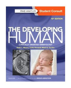 The Developing Human
